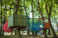 park-koala_1
